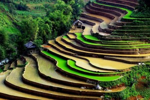 Vietnam, Lush landscapes and captivating cities
