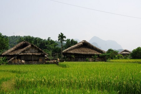 Immersion chez Mr Cay - Village Tha  - Province Ha Giang