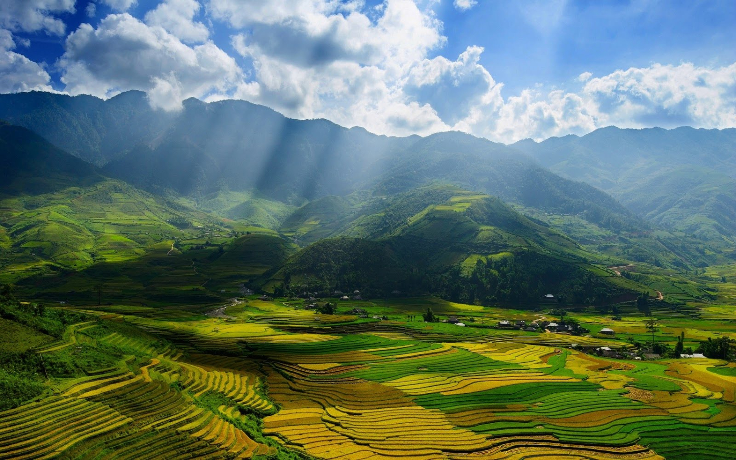 Vietnam Hotels and Travel Guide