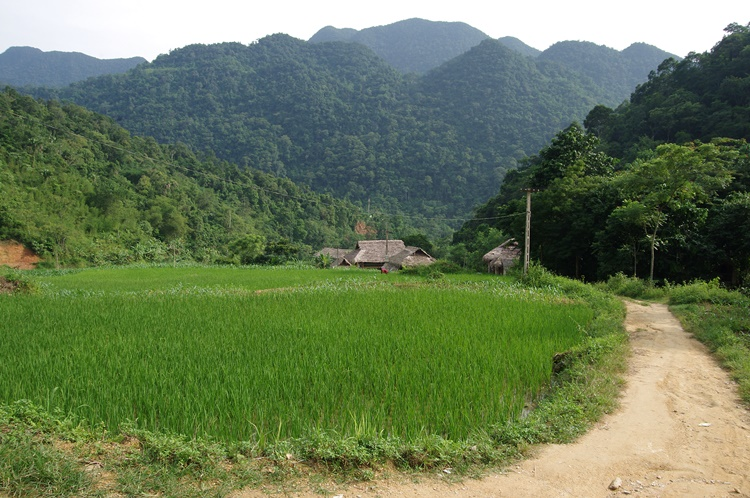 Village Hieu Pu Luong 4
